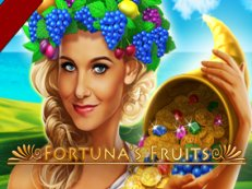 fortunas fruit slot amatic