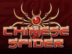 chinese spider