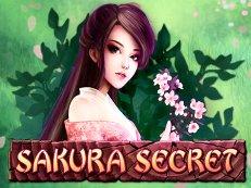 sakura secret